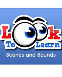 Look to Learn: Scenes and Sounds